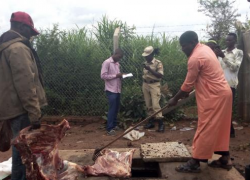 70kgs of Meat Slaughtered by Non-Muslim Destroyed...